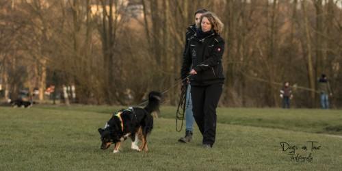 Hund entlaufen: Mandy van den Borg mit Suchhund Feline im Training