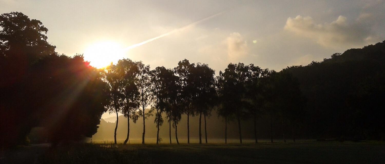 Licht und Schatten liegen oft nah beieinander